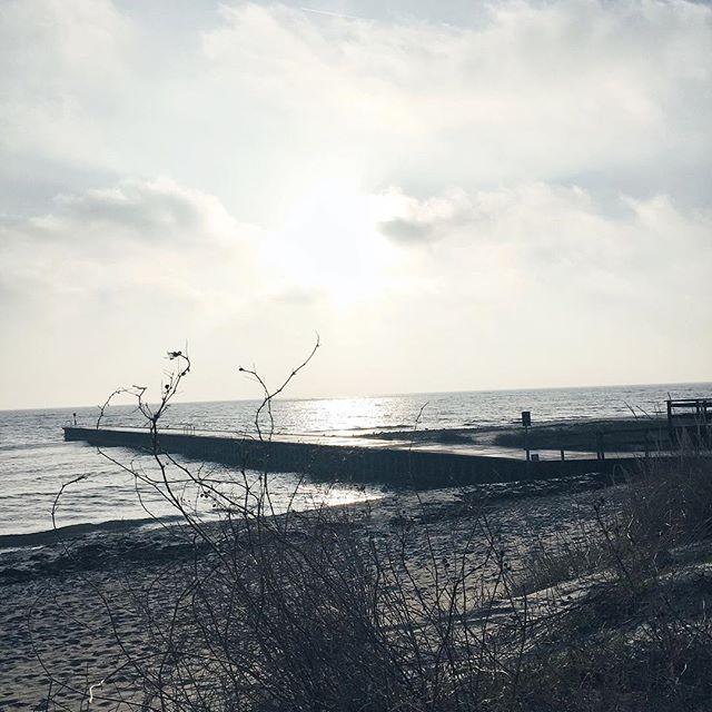 Küste, Meer, Steg