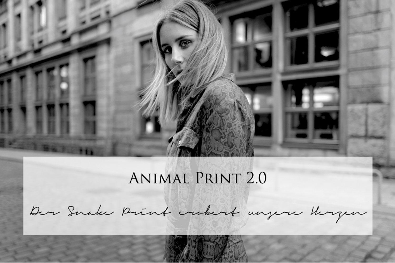 Animal-Print-Snake